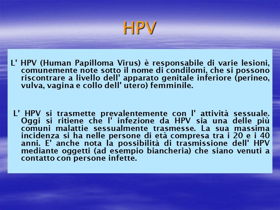 HPV L' HPV (Human Papilloma Virus) è responsabile di varie lesioni, comunemente note sotto il nome di condilomi, che si possono riscontrare a livello