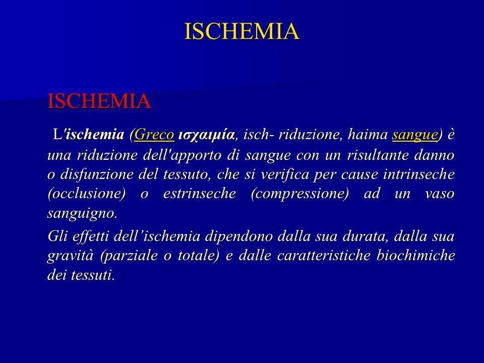 ISCHEMIA L'ischemia (Greco ισχαιμία, isch- riduzione, haima sangue) è una riduzione dell'apporto di sangue con un risultante danno o disfunzione del t