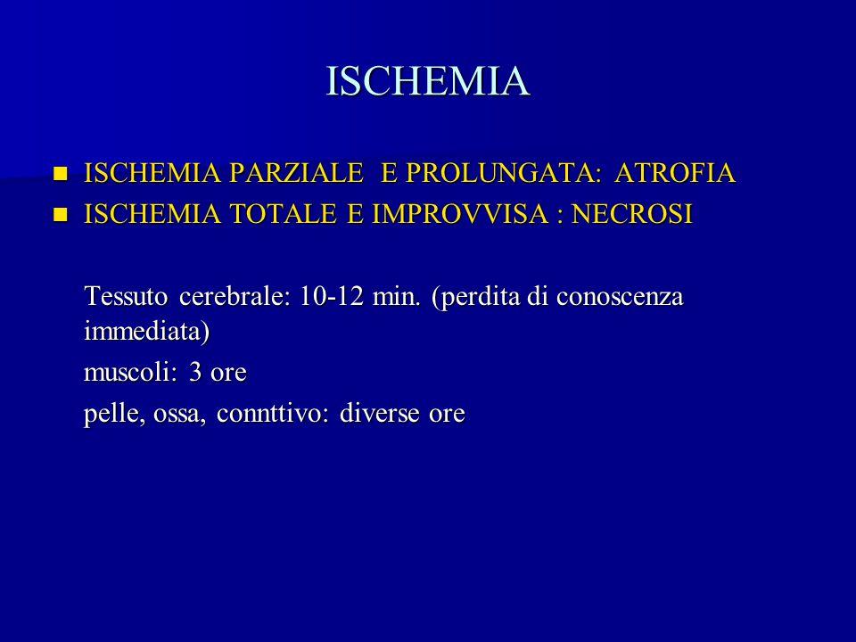 ISCHEMIA ISCHEMIA PARZIALE E PROLUNGATA: ATROFIA ISCHEMIA PARZIALE E PROLUNGATA: ATROFIA ISCHEMIA TOTALE E IMPROVVISA : NECROSI ISCHEMIA TOTALE E IMPR