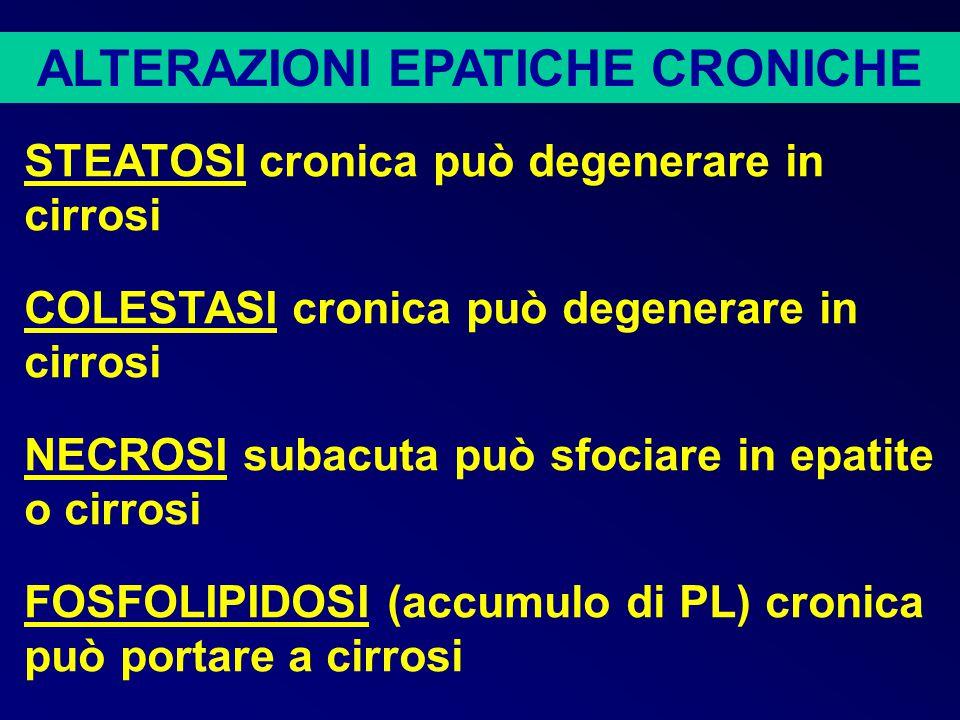 ALTERAZIONI EPATICHE CRONICHE EPATITE – caratterizzata da estesa infiammazione e necrosi a singole cellule.