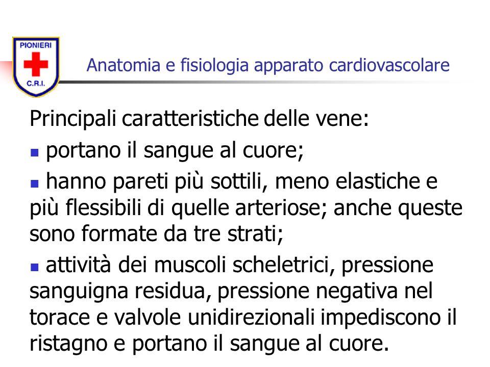 Principali caratteristiche delle vene: portano il sangue al cuore; hanno pareti più sottili, meno elastiche e più flessibili di quelle arteriose; anch
