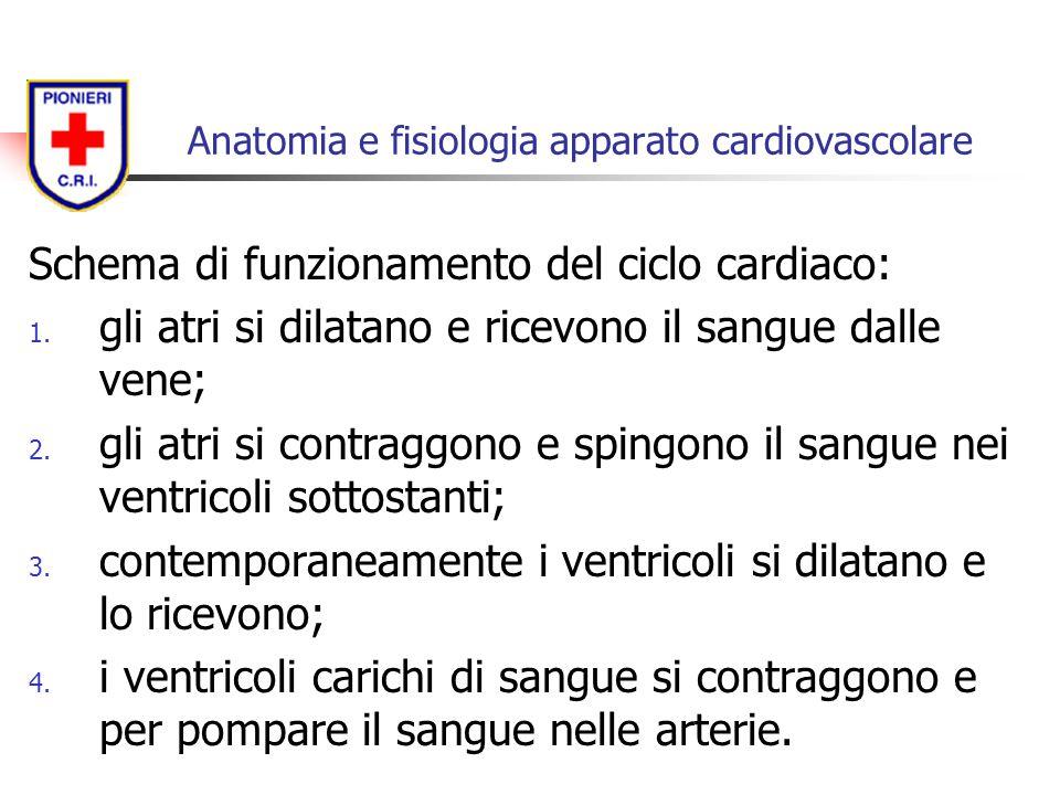Schema di funzionamento del ciclo cardiaco: 1. gli atri si dilatano e ricevono il sangue dalle vene; 2. gli atri si contraggono e spingono il sangue n