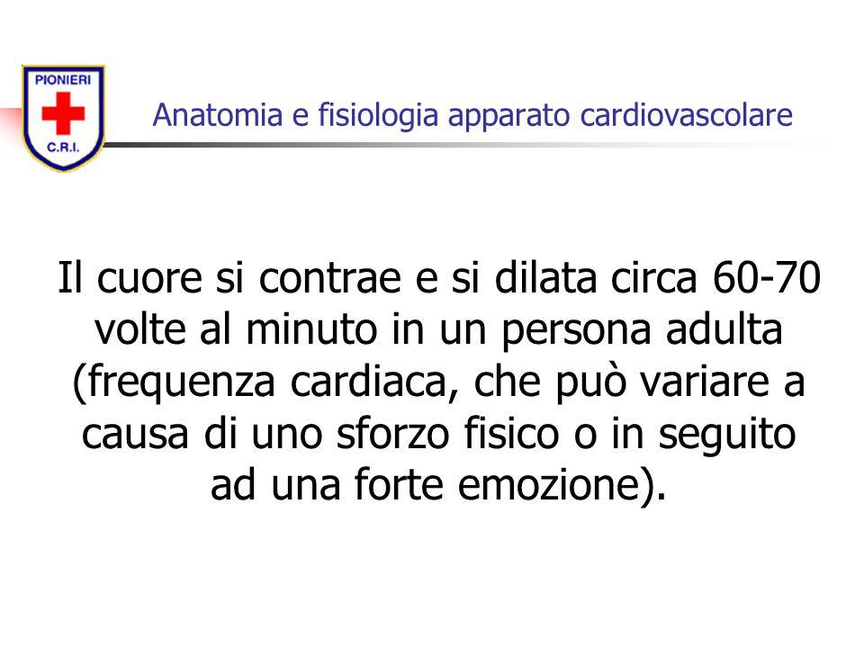 Il cuore si contrae e si dilata circa 60-70 volte al minuto in un persona adulta (frequenza cardiaca, che può variare a causa di uno sforzo fisico o i