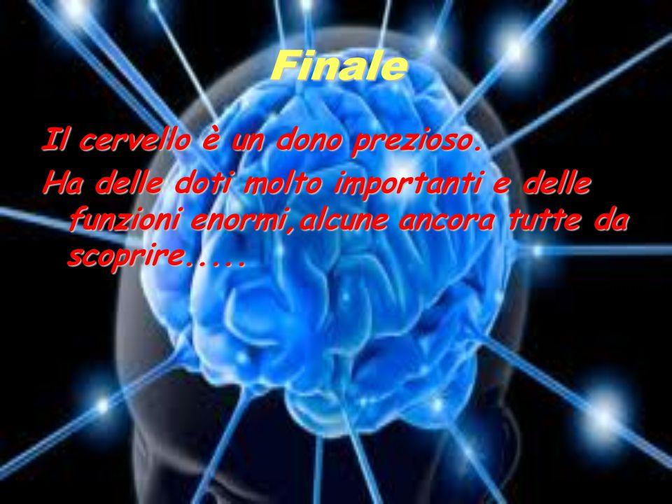 Finale Il cervello è un dono prezioso. Ha delle doti molto importanti e delle funzioni enormi,alcune ancora tutte da scoprire.....