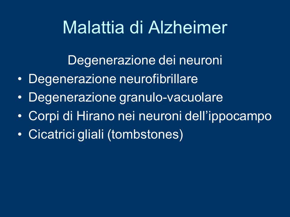 Malattia di Alzheimer Degenerazione dei neuroni Degenerazione neurofibrillare Degenerazione granulo-vacuolare Corpi di Hirano nei neuroni dell'ippocam