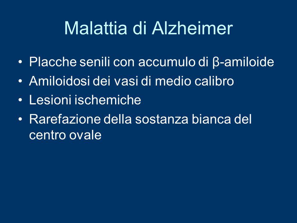Malattia di Alzheimer Placche senili con accumulo di β-amiloide Amiloidosi dei vasi di medio calibro Lesioni ischemiche Rarefazione della sostanza bia