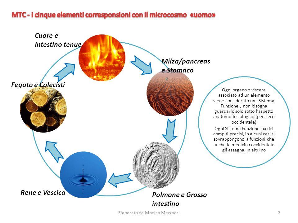 """Ogni organo o viscere associato ad un elemento viene considerato un """"Sistema Funzione"""", non bisogna guardarlo solo sotto l'aspetto anatomofiosiologico"""