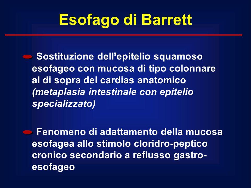 Esofago di Barrett Sostituzione dell ' epitelio squamoso esofageo con mucosa di tipo colonnare al di sopra del cardias anatomico (metaplasia intestina