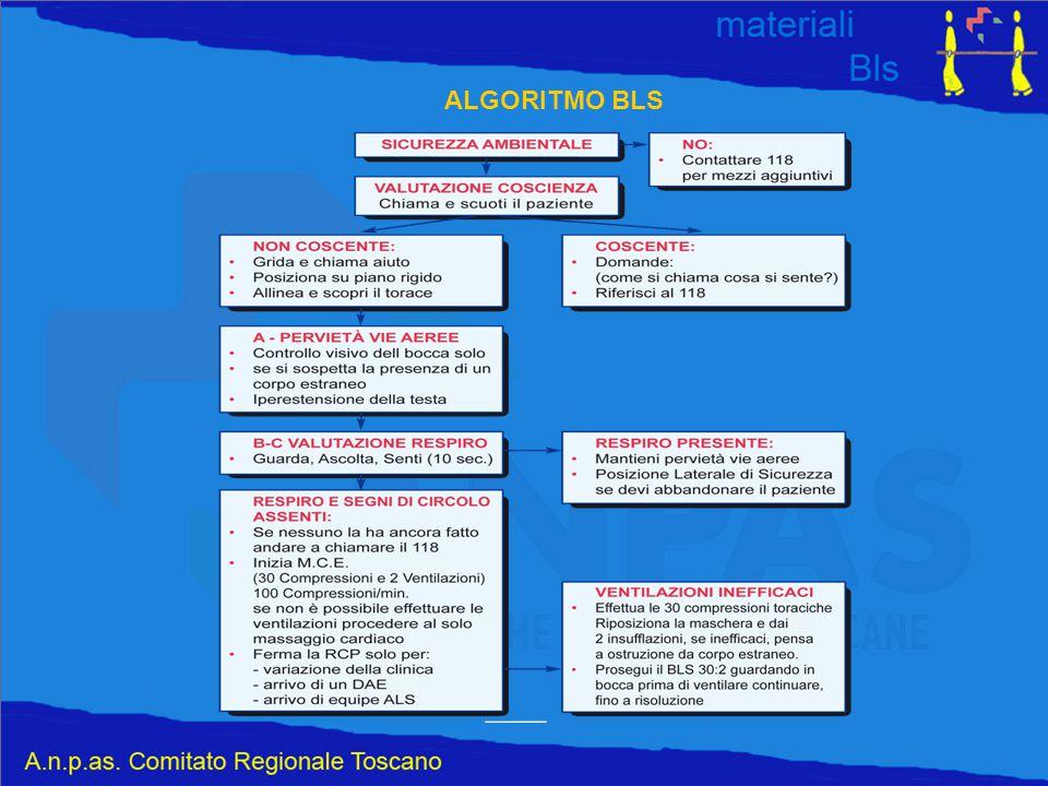 ALGORITMO BLS
