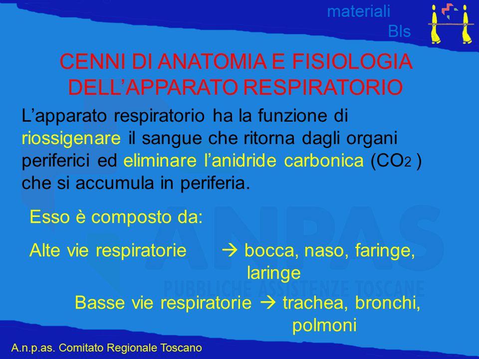 CENNI DI ANATOMIA E FISIOLOGIA DELL'APPARATO RESPIRATORIO L'apparato respiratorio ha la funzione di riossigenare il sangue che ritorna dagli organi pe