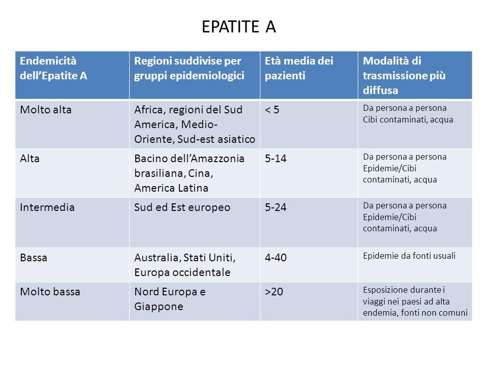 Endemicità dell'Epatite A Regioni suddivise per gruppi epidemiologici Età media dei pazienti Modalità di trasmissione più diffusa Molto altaAfrica, regioni del Sud America, Medio- Oriente, Sud-est asiatico < 5 Da persona a persona Cibi contaminati, acqua AltaBacino dell'Amazzonia brasiliana, Cina, America Latina 5-14 Da persona a persona Epidemie/Cibi contaminati, acqua IntermediaSud ed Est europeo5-24 Da persona a persona Epidemie/Cibi contaminati, acqua BassaAustralia, Stati Uniti, Europa occidentale 4-40 Epidemie da fonti usuali Molto bassaNord Europa e Giappone >20 Esposizione durante i viaggi nei paesi ad alta endemia, fonti non comuni EPATITE A