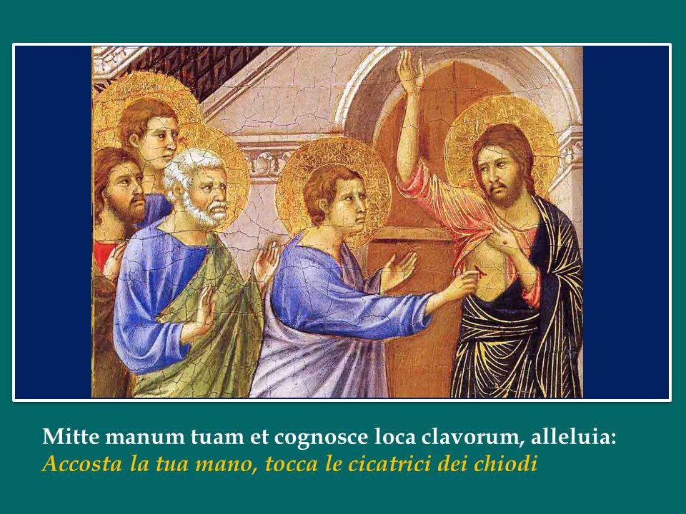 II Domenica di Pasqua