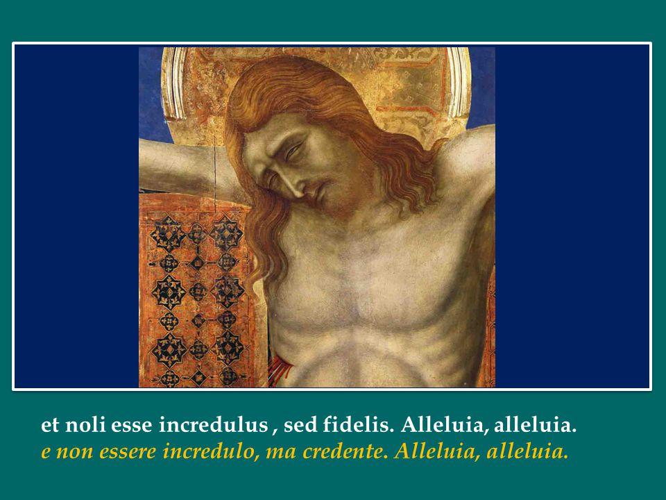 Papa Francesco Omelia per la canonizzazione di S. Giovanni XXIII e S. Giovanni Paolo II in piazza San Pietro nella II Domenica di Pasqua /a Festa dell