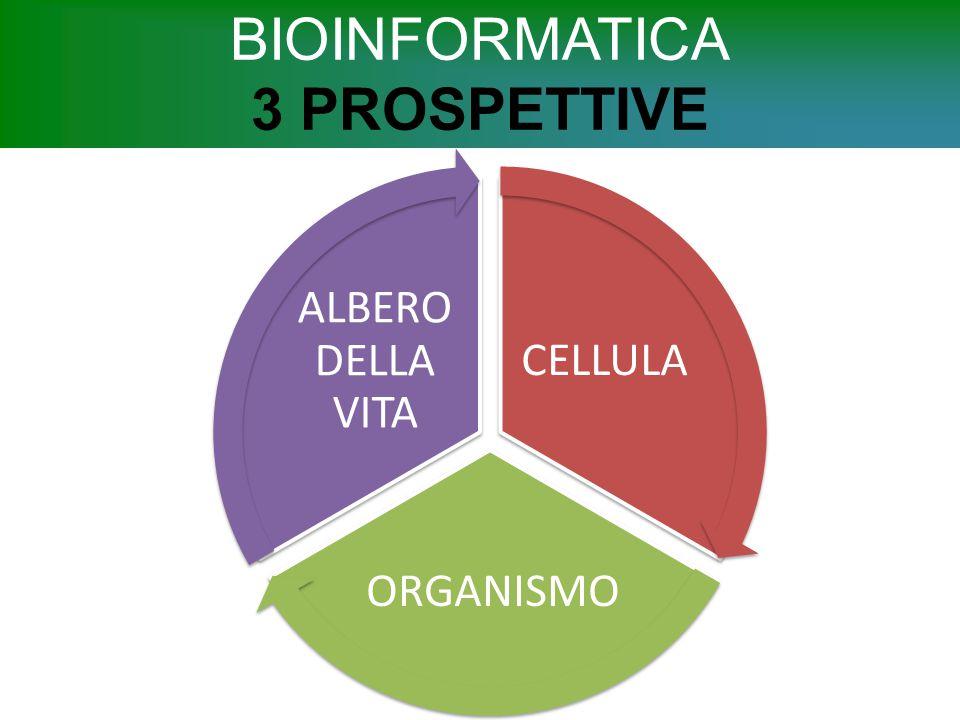 BIOINFORMATICA 3 PROSPETTIVE CELLULA ORGANISMO ALBERO DELLA VITA
