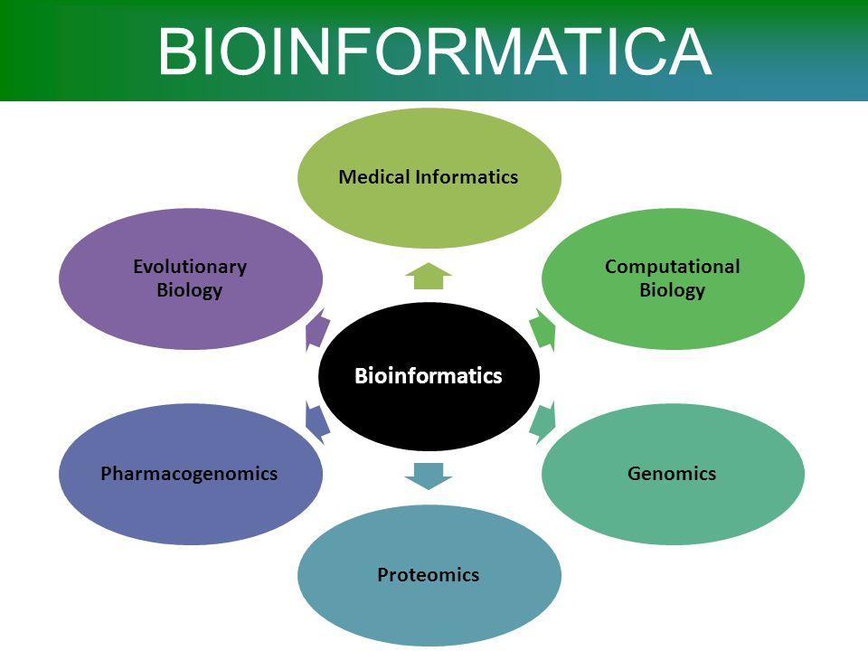 Alfabeto molecolare GLI ACIDI NUCLEICI E LE PROTEINE SONO POLIMERI LINEARI  BIOSEQUENZE DNA e RNA sono polimeri lineari di nucleotidi, specializzati nel deposito, nella trasmissione e nell'utilizzazione dell'informazione genetica Gli acidi nucleici possono assumere specifiche forme nello spazio 3D, come le proteine, e svolgere attivita' diverse (ad es.