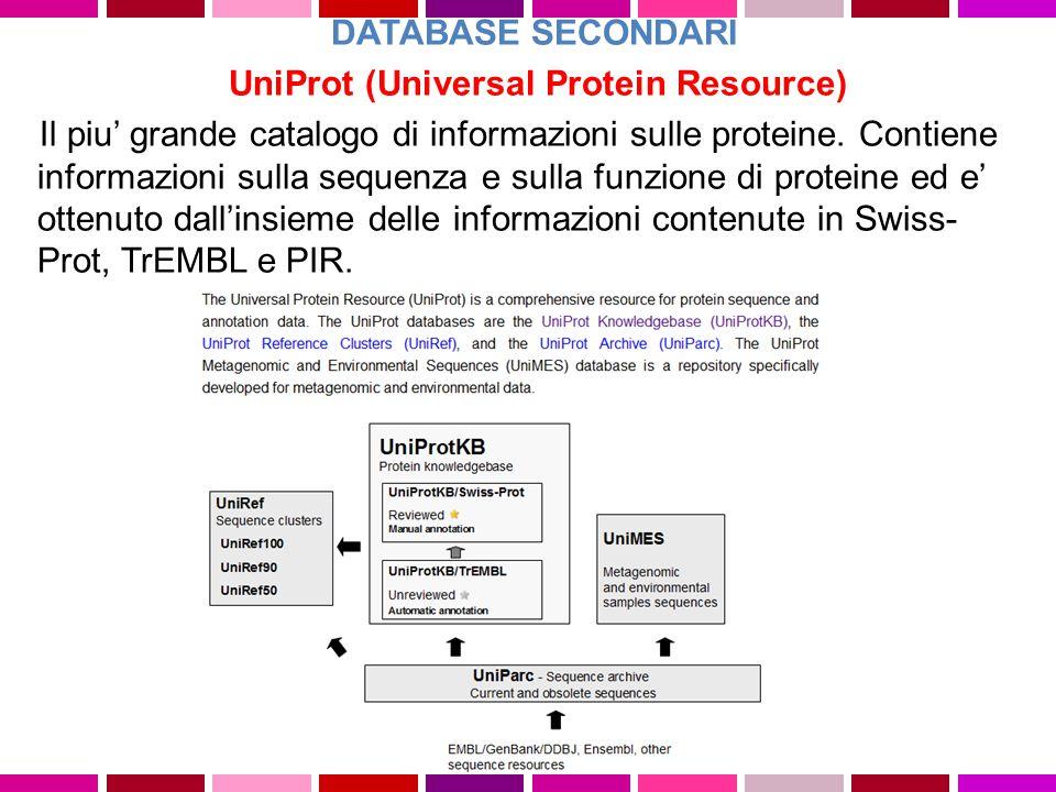 UniProt (Universal Protein Resource) Il piu' grande catalogo di informazioni sulle proteine. Contiene informazioni sulla sequenza e sulla funzione di