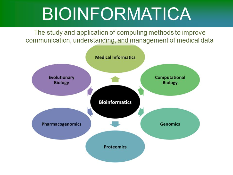 BIOINFORMATICA The study and application of computing methods to improve communication, understanding, and management of medical data