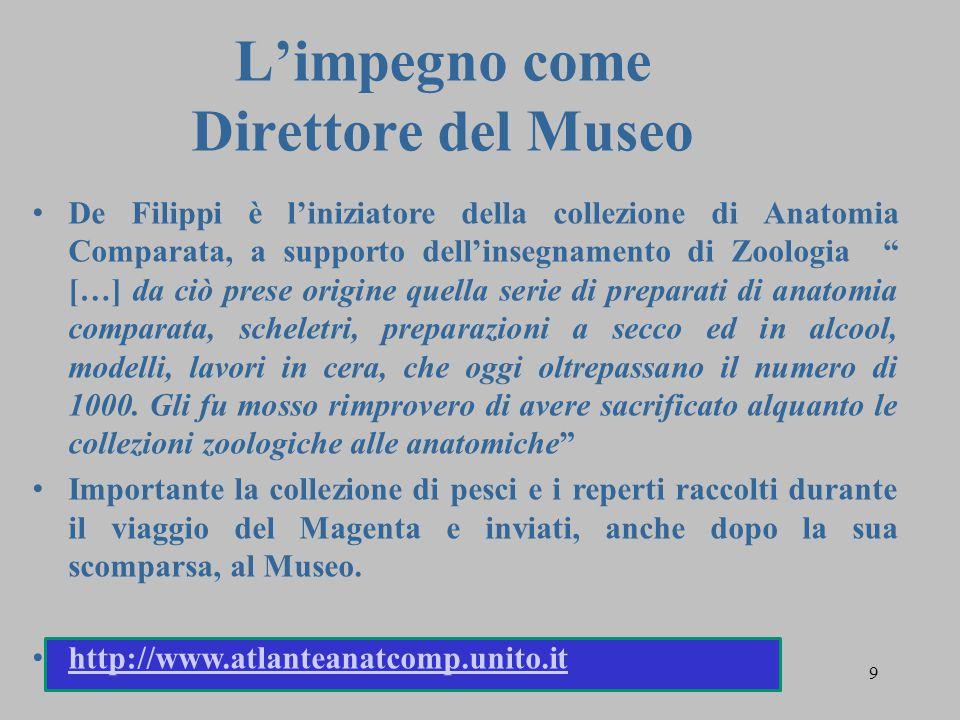 """9 L'impegno come Direttore del Museo De Filippi è l'iniziatore della collezione di Anatomia Comparata, a supporto dell'insegnamento di Zoologia """" […]"""