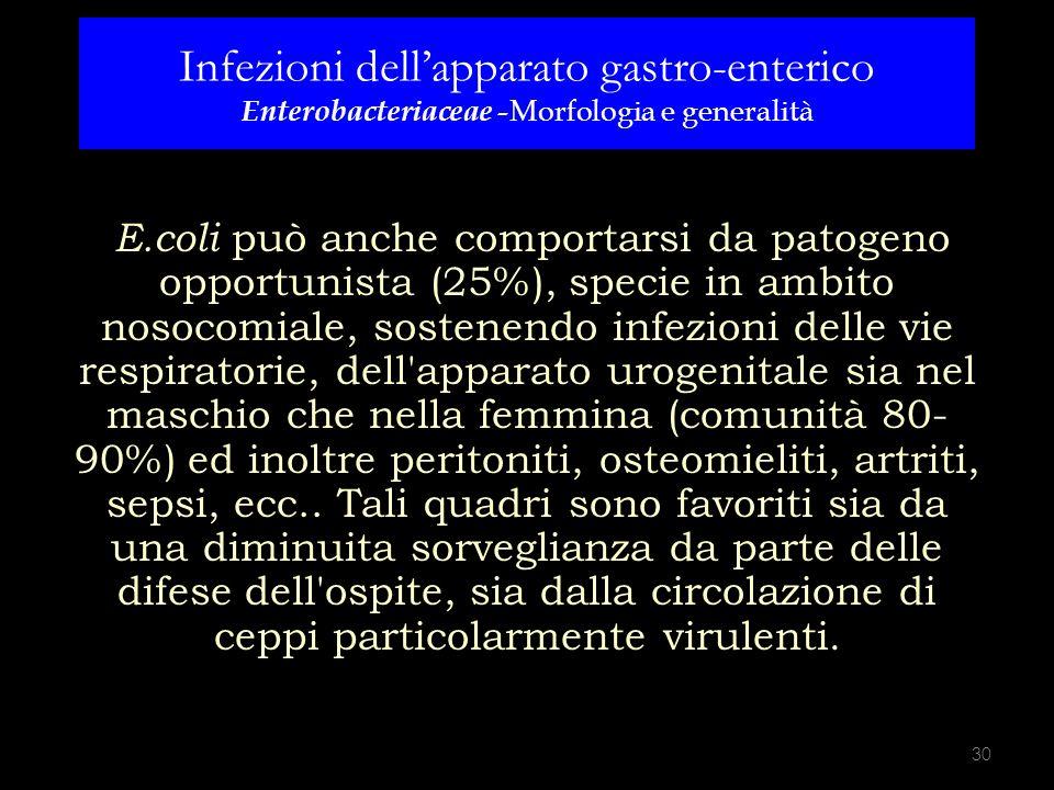 E.coli E.coli può anche comportarsi da patogeno opportunista (25%), specie in ambito nosocomiale, sostenendo infezioni delle vie respiratorie, dell'ap