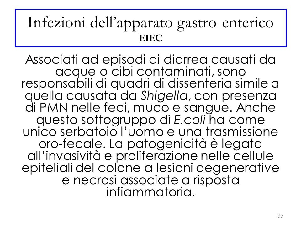 Infezioni dell'apparato gastro-enterico EIEC Associati ad episodi di diarrea causati da acque o cibi contaminati, sono responsabili di quadri di dissenteria simile a quella causata da Shigella, con presenza di PMN nelle feci, muco e sangue.