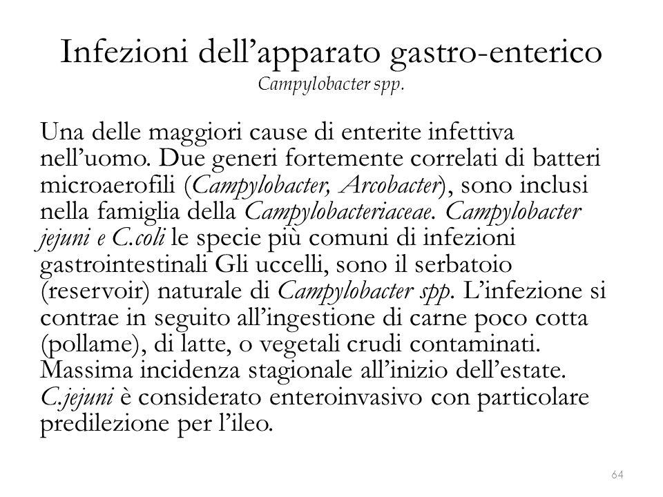 Infezioni dell'apparato gastro-enterico Campylobacter spp. Una delle maggiori cause di enterite infettiva nell'uomo. Due generi fortemente correlati d