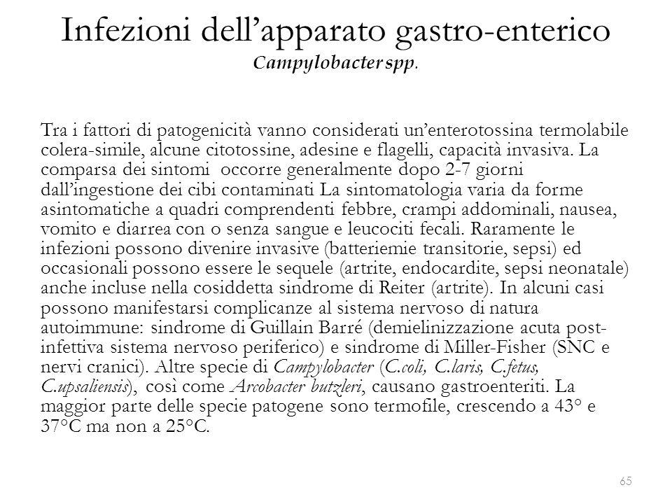 Infezioni dell'apparato gastro-enterico Campylobacter spp. Tra i fattori di patogenicità vanno considerati un'enterotossina termolabile colera-simile,
