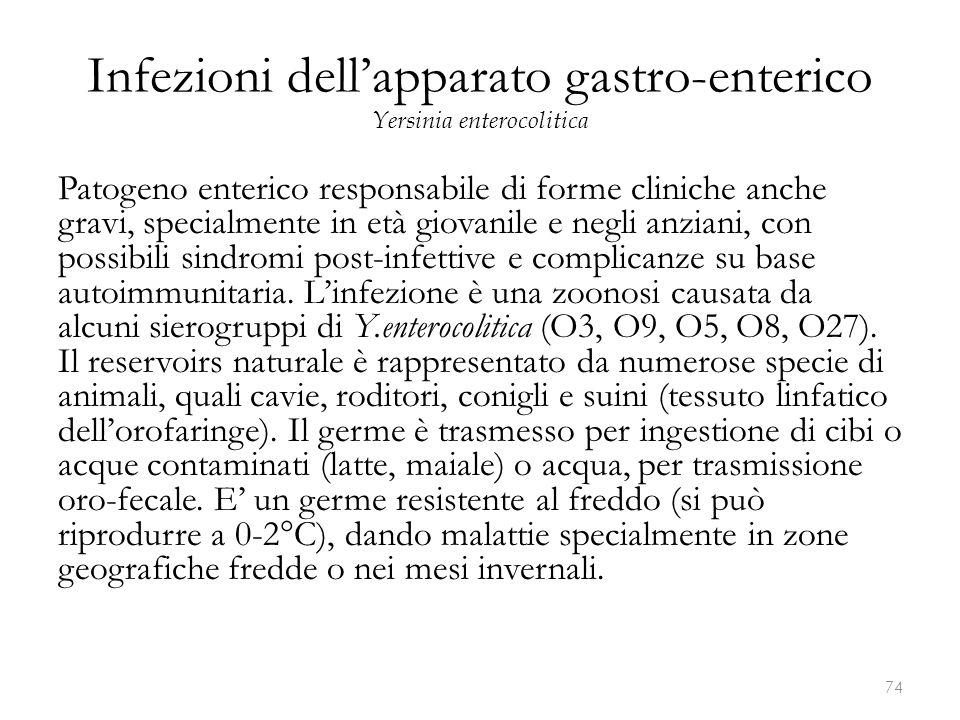 Infezioni dell'apparato gastro-enterico Yersinia enterocolitica Patogeno enterico responsabile di forme cliniche anche gravi, specialmente in età giov