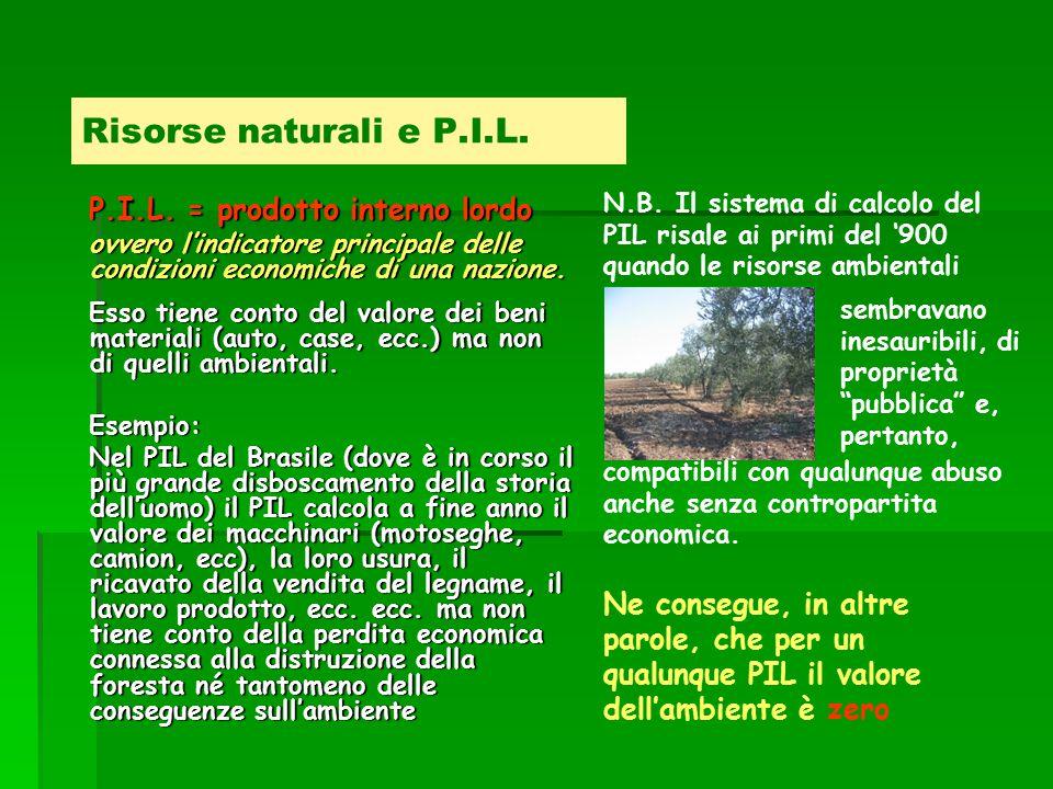 Risorse naturali e P.I.L. P.I.L.