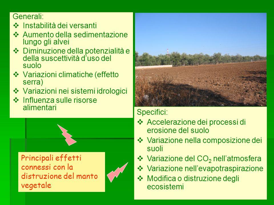 Generali:   Instabilità dei versanti   Aumento della sedimentazione lungo gli alvei   Diminuzione della potenzialità e della suscettività d'uso del suolo   Variazioni climatiche (effetto serra)   Variazioni nei sistemi idrologici   Influenza sulle risorse alimentari Specifici:  Accelerazione dei processi di erosione del suolo  Variazione nella composizione dei suoli  Variazione del CO 2 nell'atmosfera  Variazione nell'evapotraspirazione  Modifica o distruzione degli ecosistemi Principali effetti connessi con la distruzione del manto vegetale