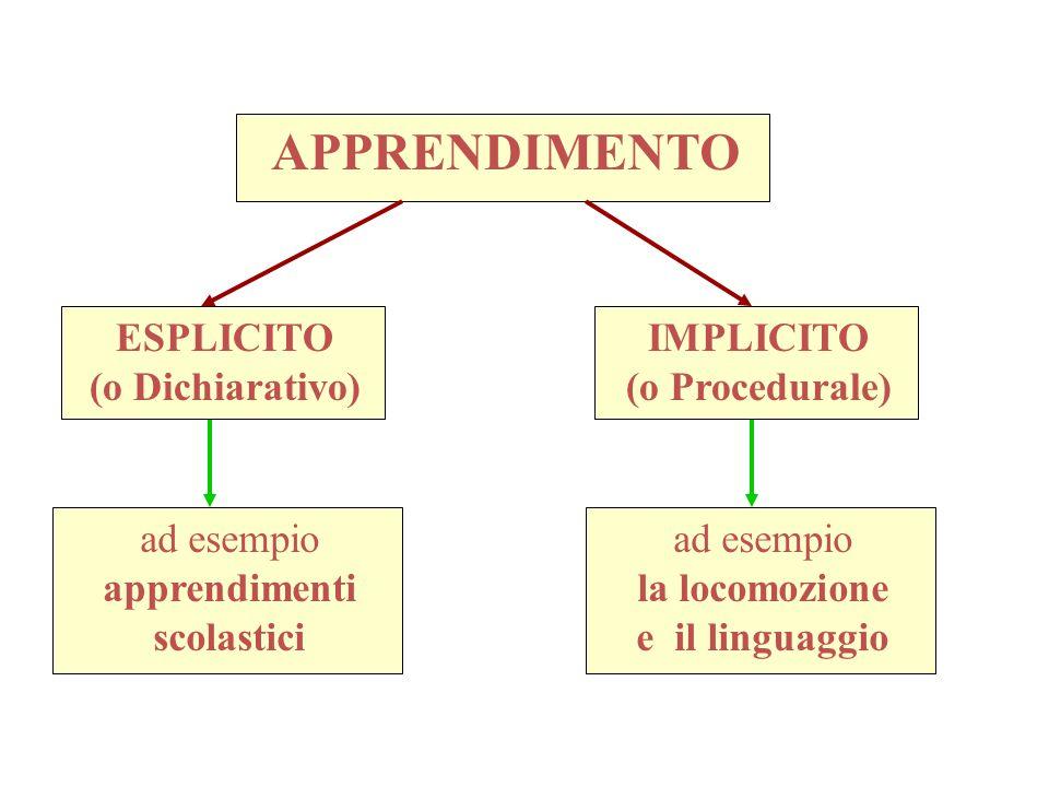 APPRENDIMENTO ad esempio apprendimenti scolastici ESPLICITO (o Dichiarativo) IMPLICITO (o Procedurale) ad esempio la locomozione e il linguaggio