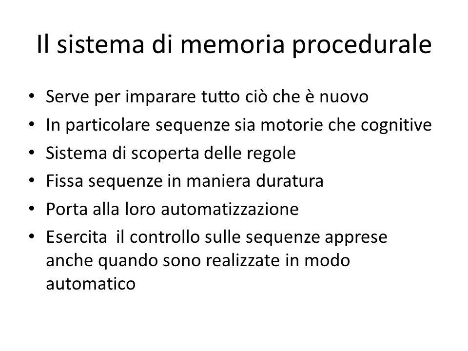 Il sistema di memoria procedurale Serve per imparare tutto ciò che è nuovo In particolare sequenze sia motorie che cognitive Sistema di scoperta delle
