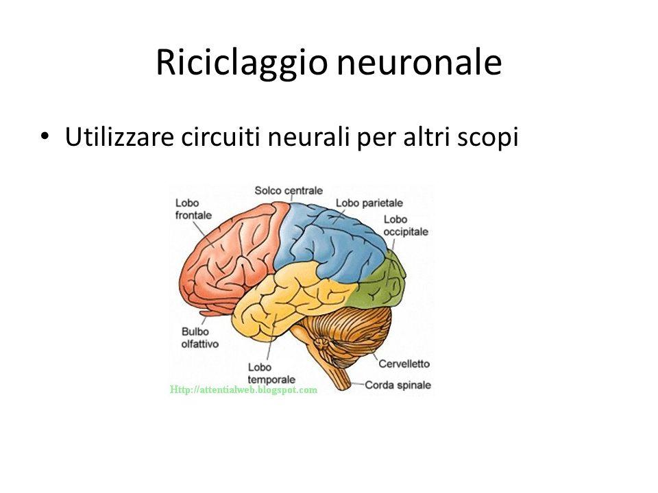 Riciclaggio neuronale Utilizzare circuiti neurali per altri scopi