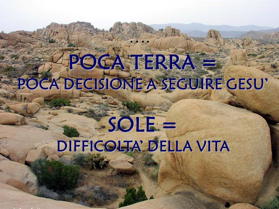 …. POCA TERRA = POCA DECISIONE A SEGUIRE GESU' SOLE = DIFFICOLTA' DELLA VITA