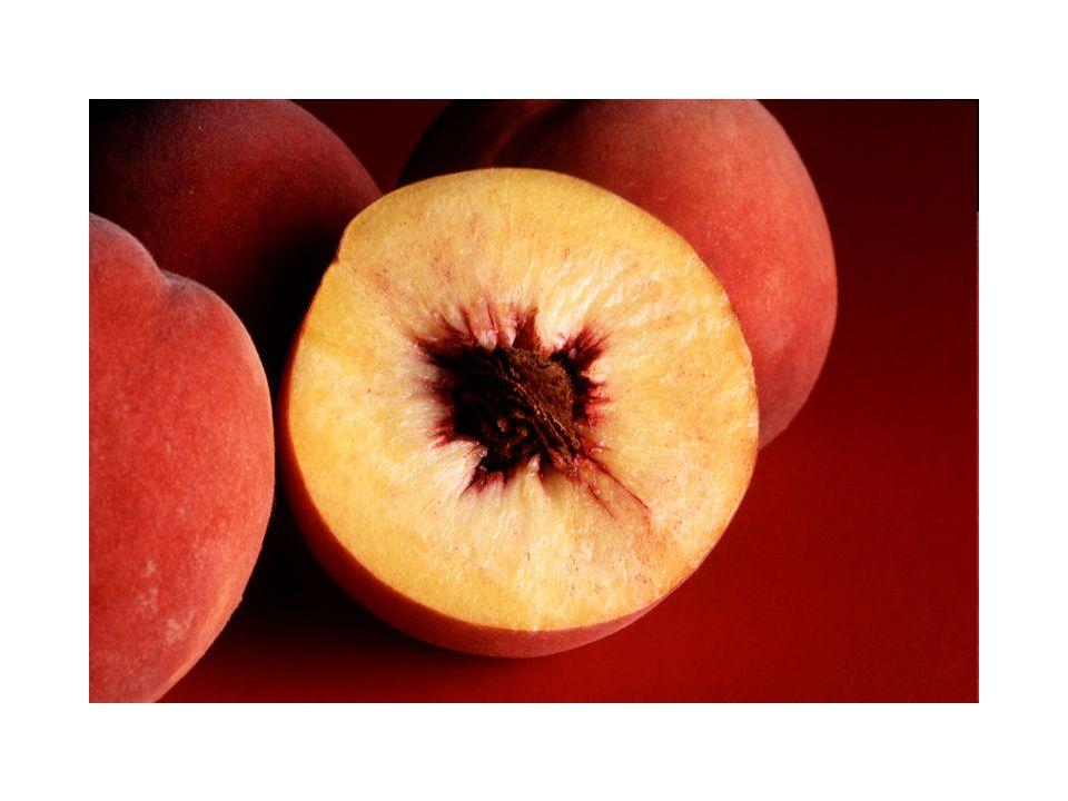 I frutti possono essere classificati, secondo la consistenza del pericarpo, come secchi o carnosi, -per l apertura o meno del pericarpo a maturità, come deiscenti o indeiscenti.