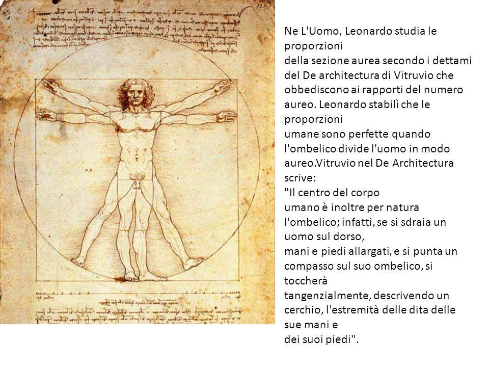 Ne L Uomo, Leonardo studia le proporzioni della sezione aurea secondo i dettami del De architectura di Vitruvio che obbediscono ai rapporti del numero aureo.
