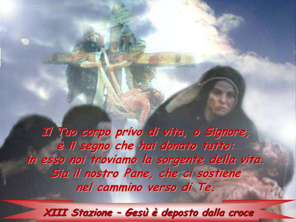 XIII Stazione – Gesù è deposto dalla croce Il Tuo corpo privo di vita, o Signore, è il segno che hai donato tutto: in esso noi troviamo la sorgente de