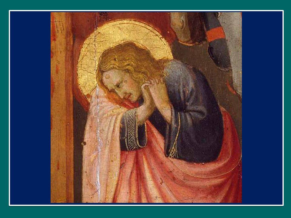 Rogamus, Deus, tuam majestatem: Invochiamo, o Dio, la tua maestà: auribus sacris gemitus exaudi: porgi l orecchio ai nostri gemiti, crimina nostra placidus indulge.