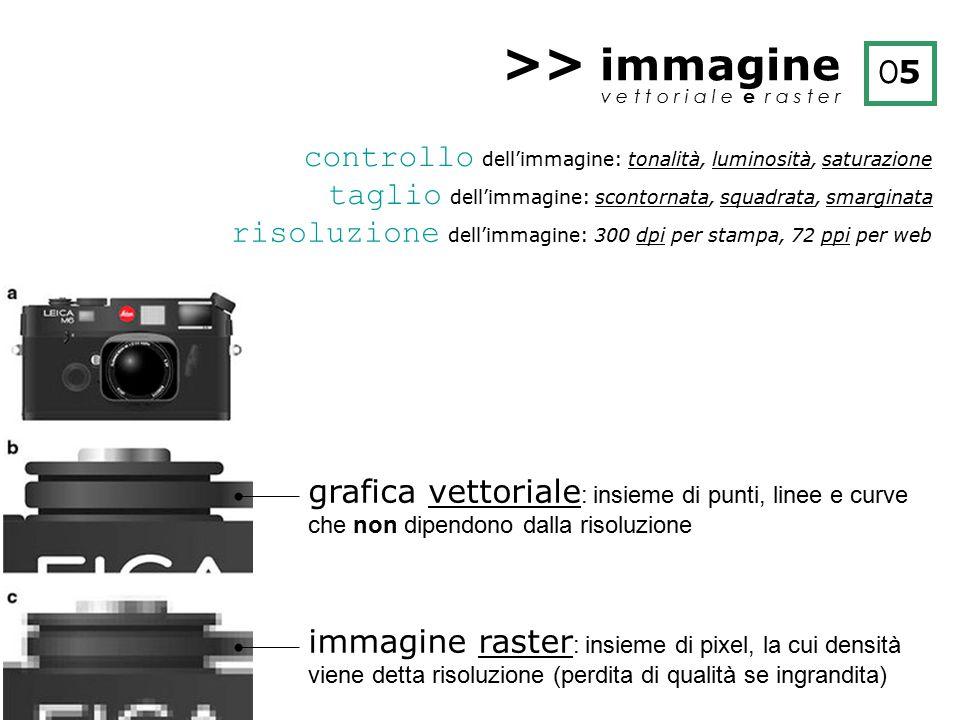 >> immagine v e t t o r i a l e e r a s t e r O5O5 controllo dell'immagine: tonalità, luminosità, saturazione taglio dell'immagine: scontornata, squad