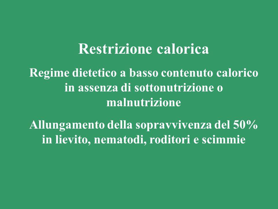 Restrizione calorica Regime dietetico a basso contenuto calorico in assenza di sottonutrizione o malnutrizione Allungamento della sopravvivenza del 50% in lievito, nematodi, roditori e scimmie