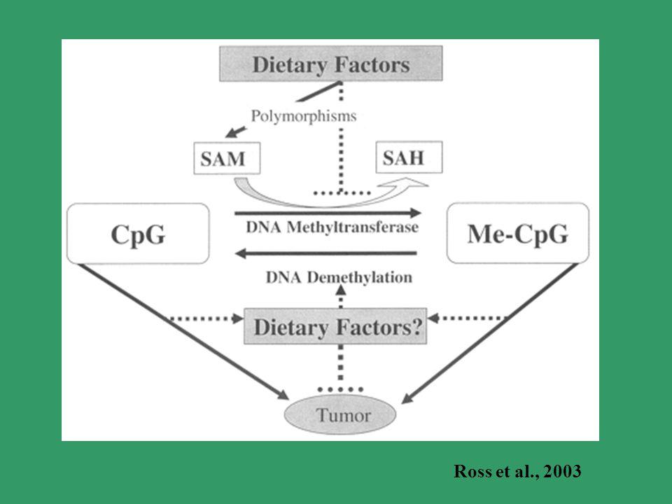 Ross et al., 2003