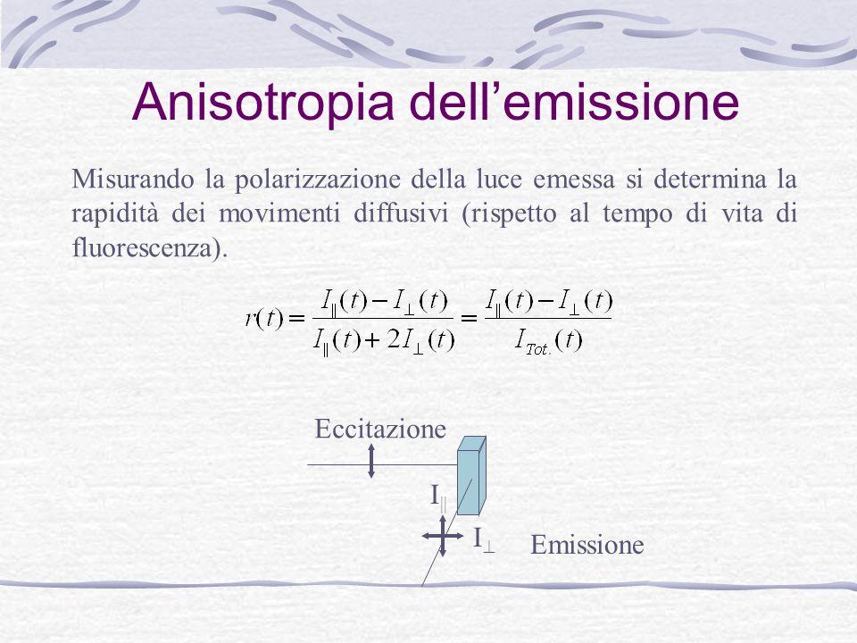 Anisotropia dell'emissione Misurando la polarizzazione della luce emessa si determina la rapidità dei movimenti diffusivi (rispetto al tempo di vita d