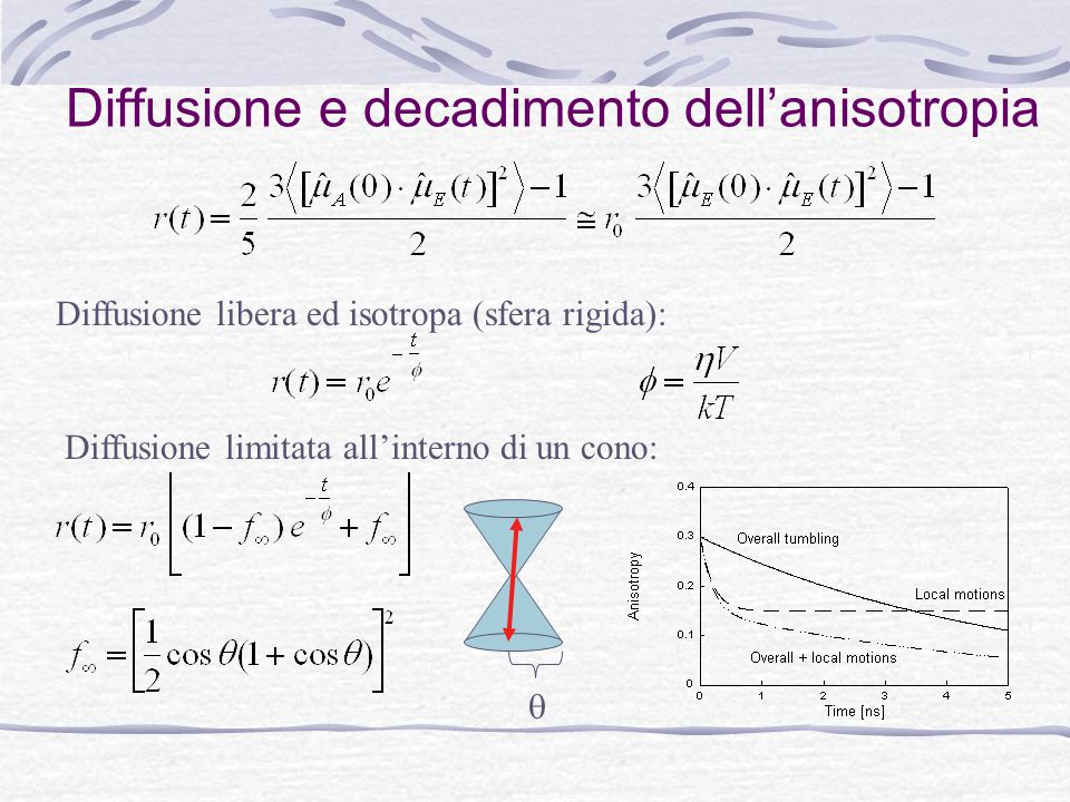 Diffusione e decadimento dell'anisotropia Diffusione libera ed isotropa (sfera rigida): Diffusione limitata all'interno di un cono: 