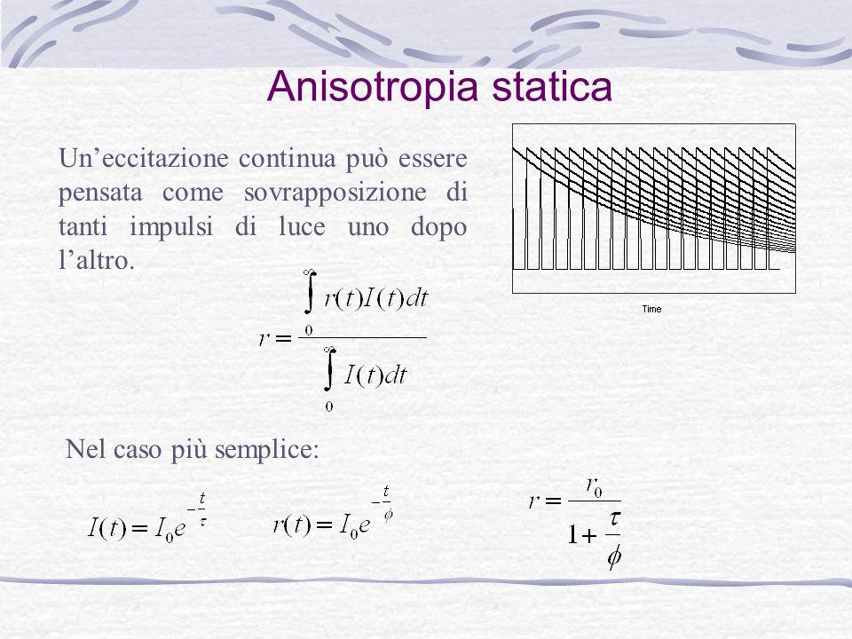 Anisotropia statica Un'eccitazione continua può essere pensata come sovrapposizione di tanti impulsi di luce uno dopo l'altro. Nel caso più semplice: