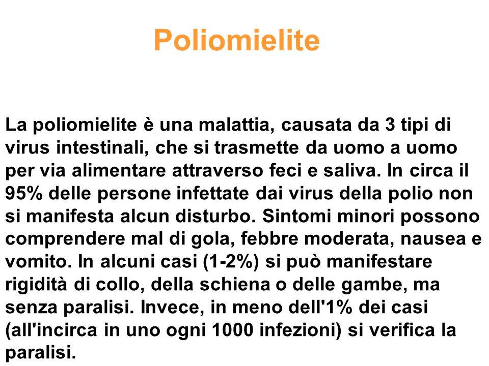 Poliomielite La poliomielite è una malattia, causata da 3 tipi di virus intestinali, che si trasmette da uomo a uomo per via alimentare attraverso fec