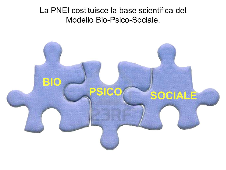 La PNEI costituisce la base scientifica del Modello Bio-Psico-Sociale. BIO PSICO SOCIALE