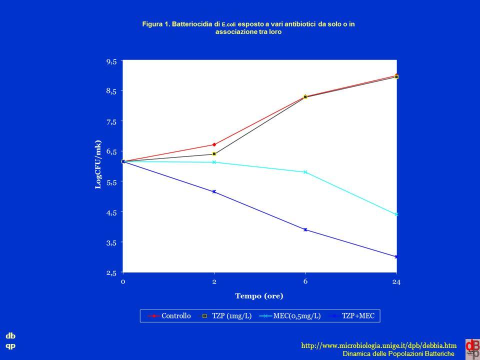 db qp Dinamica delle Popolazioni Batteriche http://www.microbiologia.unige.it/dpb/debbia.htm