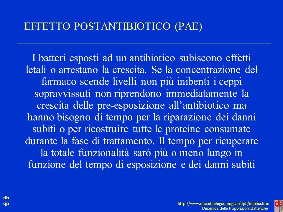 db qp Dinamica delle Popolazioni Batteriche http://www.microbiologia.unige.it/dpb/debbia.htm EFFETTO POSTANTIBIOTICO (PAE) I batteri esposti ad un ant
