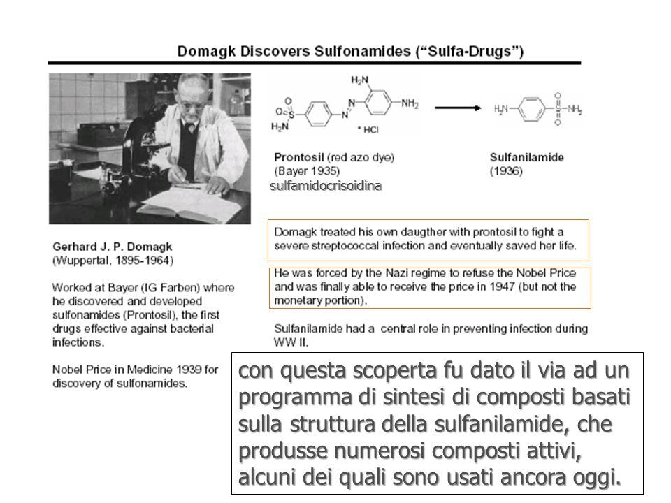 sulfamidocrisoidina con questa scoperta fu dato il via ad un programma di sintesi di composti basati sulla struttura della sulfanilamide, che produsse