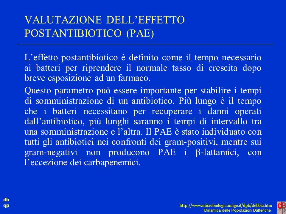 db qp Dinamica delle Popolazioni Batteriche http://www.microbiologia.unige.it/dpb/debbia.htm VALUTAZIONE DELL'EFFETTO POSTANTIBIOTICO (PAE) L'effetto