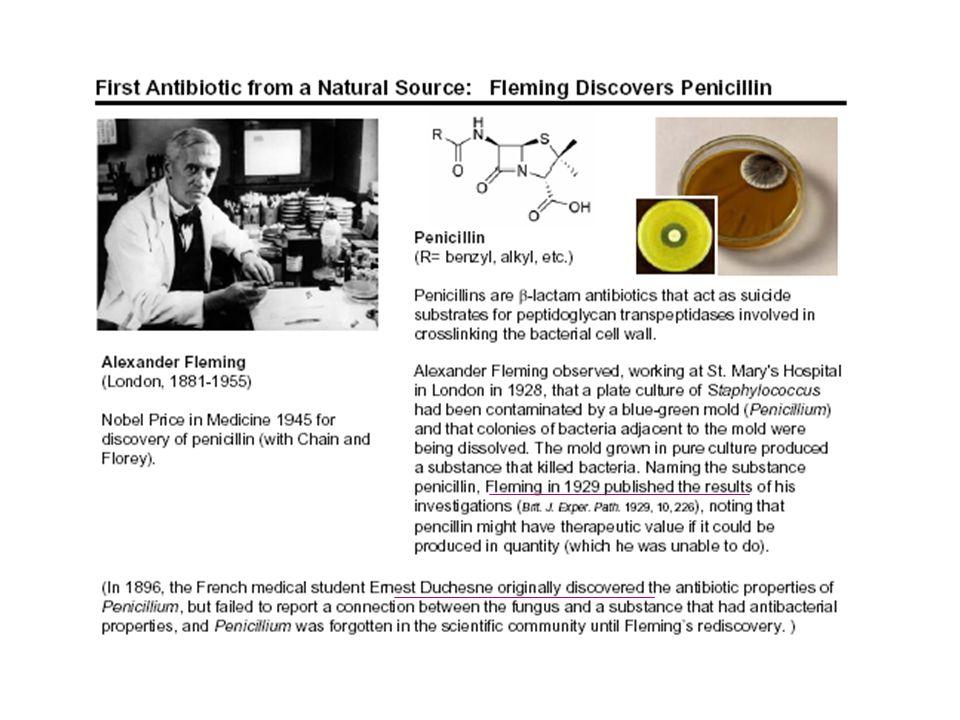 http://www.microbiologia.unige.it/dpb/indexxx.htm Attività antibatterica Battericidi ► preferiti nei pz.